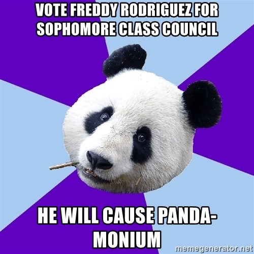 Phts Panda - Vote freddy rodriguez for sophomore class council He will cause panda-monium