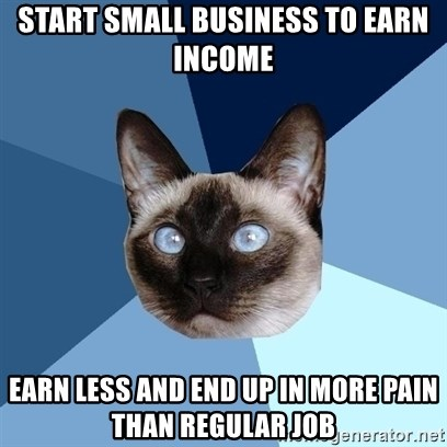 Chronic Illness Cat - Start small business to earn income earn less and end up in more pain than regular job