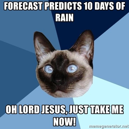 Chronic Illness Cat - Forecast Predicts 10 days of rain Oh Lord Jesus, Just take me now!