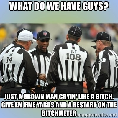 NFL Ref Meeting - WHAT DO WE HAVE GUYS? JUST A GROWN MAN CRYIN' LIKE A BITCH. GIVE EM FIVE YARDS AND A RESTART ON THE BITCHMETER