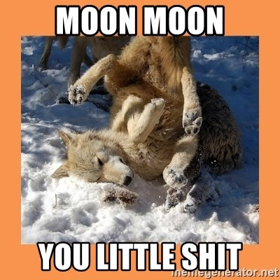 Moon Moon - MOON MOON you liTTLE SHIT