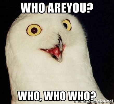 O Rly Owl - Who Areyou? Who, Who Who?