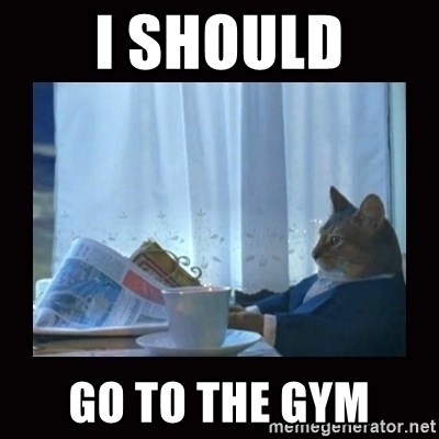 i should buy a boat cat - I should go to the gym