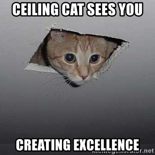 Ceiling cat - Ceiling cat sees you Creating Excellence