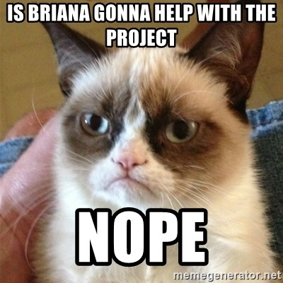 Grumpy Cat  - Is briana gonna help with the project Nope
