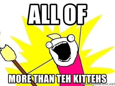 X ALL THE THINGS - All of More than Teh Kittehs