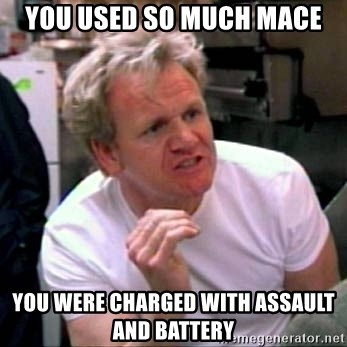 Gordon Ramsay - You used so much mace you were charged with assault and battery