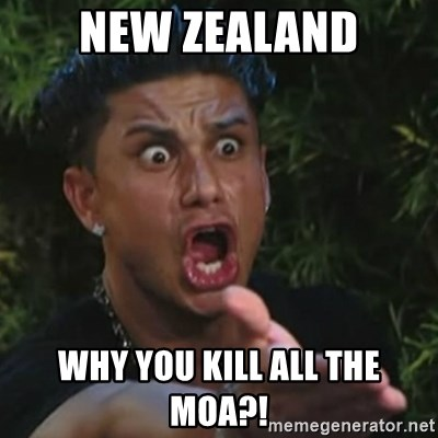 Angry Guido  - NEW ZEALAND WHY YOU KILL ALL THE MOA?!