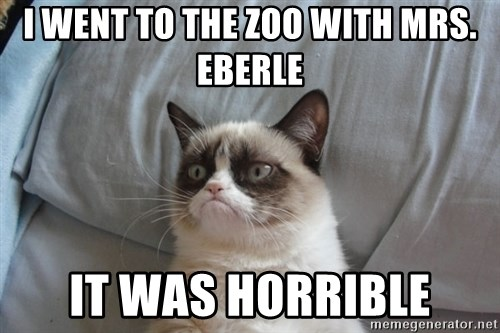 Grumpy cat good - I went to the zoo with Mrs. Eberle It was horrible