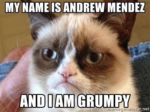 Angry Cat Meme - My name is Andrew Mendez And I am grumpy