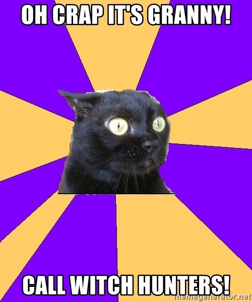 Anxiety Cat - OH CRAP IT'S GRANNY! CALL WITCH HUNTERS!