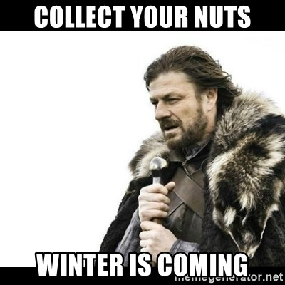 Winter is Coming - Collect your nuts Winter is coming