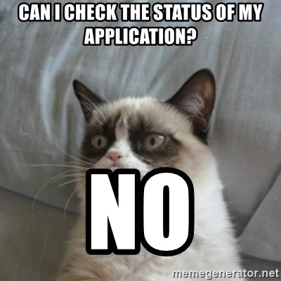 Grumpy Cat ={ - can i check the status of my application? no