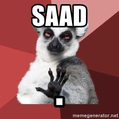 Chill Out Lemur - Saad .