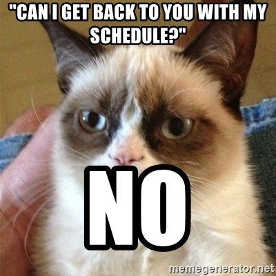 """Grumpy Cat  - """"Can I get back to you with my schedule?"""" No"""