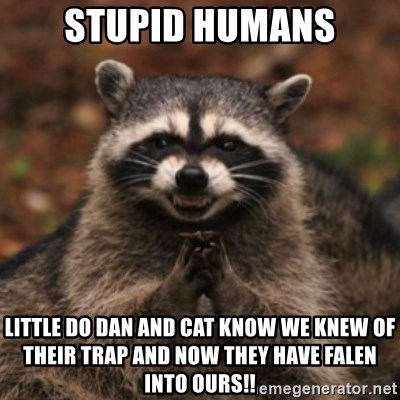 evil raccoon - Stupid humans little do Dan and cat know we knew of their trap and now they have falen into ours!!