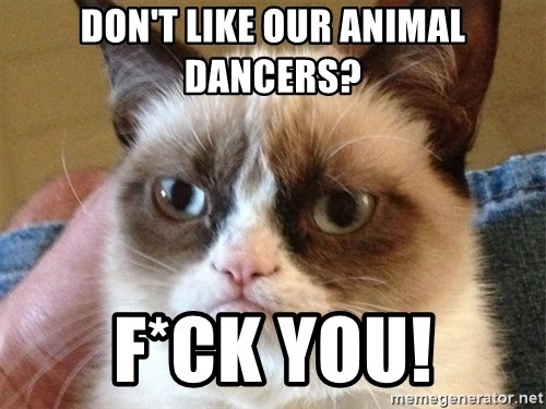 Angry Cat Meme - Don't like our animal dancers? F*CK YOU!