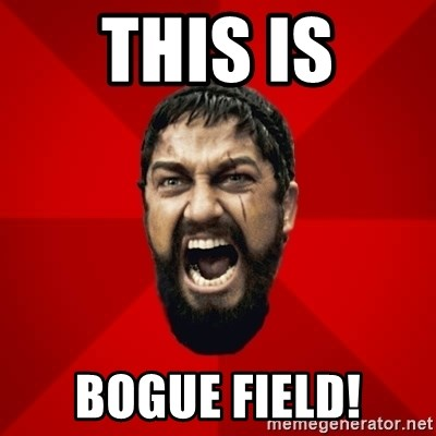 THIS IS SPARTAAA!!11!1 - this is bogue field!