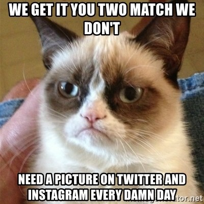 Grumpy Cat  - We get it you tWo match we don't Need a picture on tWitter and Instagram every damn day