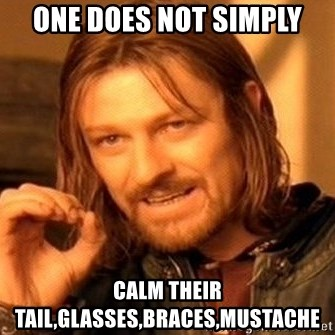 One Does Not Simply - One Does Not Simply Calm Their Tail,Glasses,Braces,Mustache