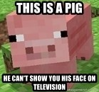 Minecraft PIG - THIS IS A PIG HE CAN'T SHOW YOU HIS FACE ON TELEVISION