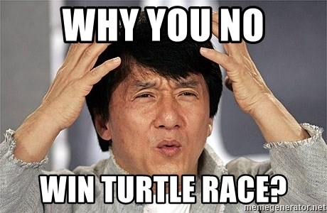 Jackie Chan - WHY YOU NO WIN TURTLE RACE?