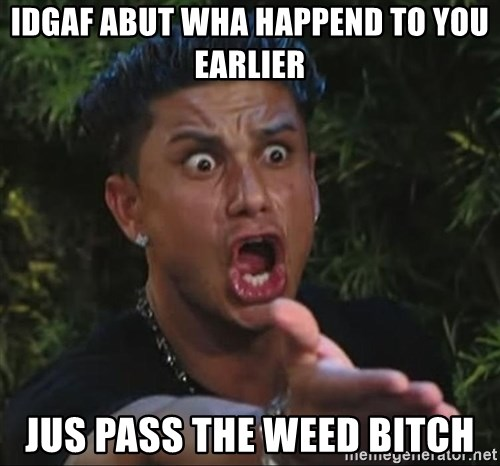 Pauly D - idgaf abut wha happend to you earlier jus pass the weed bitch