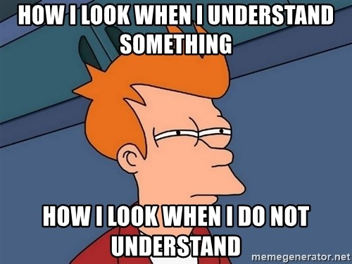 Futurama Fry - how i look when i understand something how i look when i do NOT understand