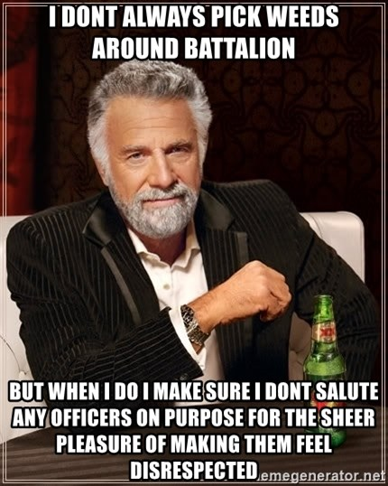 The Most Interesting Man In The World - i dont always pick weeds around battalion but when i do i make sure i dont salute any officers on purpose for the sheer pleasure of making them feel disrespected