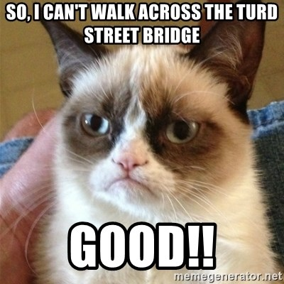 Grumpy Cat  - so, i can't walk across the turd street bridge good!!
