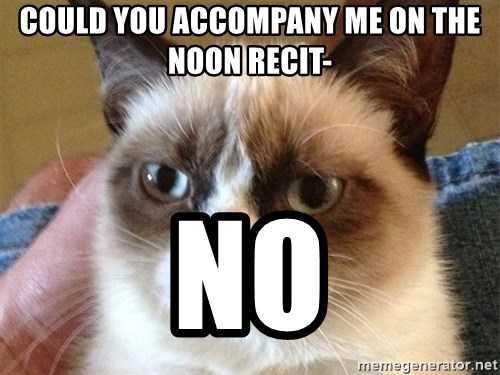 Angry Cat Meme - could you accompany me on the noon recit- no