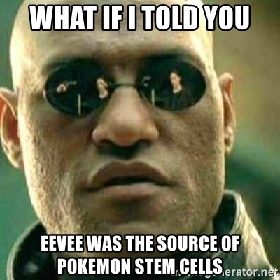 What If I Told You - what if i told you eevee was the source of pokemon stem cells