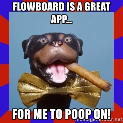 Triumph the Insult Comic Dog - Flowboard is a great app... For me to poop on!