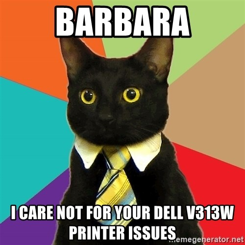 Business Cat - Barbara I care not for your Dell V313w Printer issues