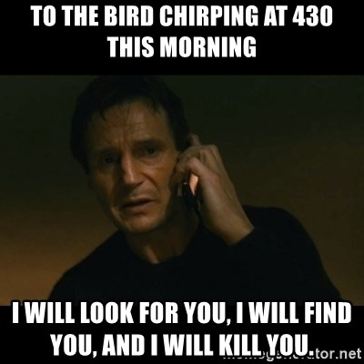liam neeson taken - To the bird chirping at 430 this morning I will look for you, I will find you, and I will kill you.