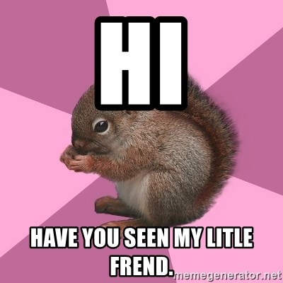 Shipper Squirrel - HI HAVE YOU SEEN MY LITLE FREND.