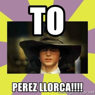 Harry Potter Sorting Hat - TO PEREZ LLORCA!!!!