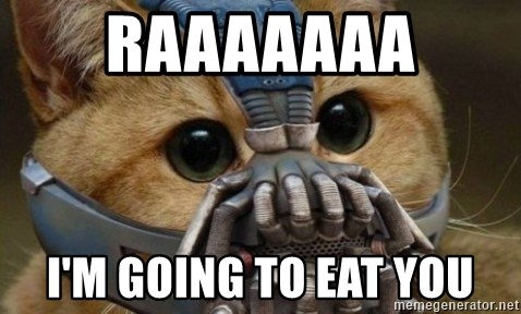bane cat - RAAAAAAA I'M GOING TO EAT YOU