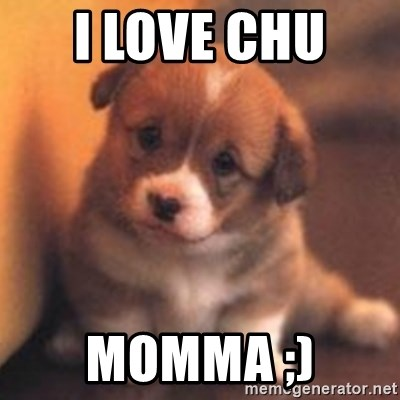 cute puppy - i love chu  momma ;)