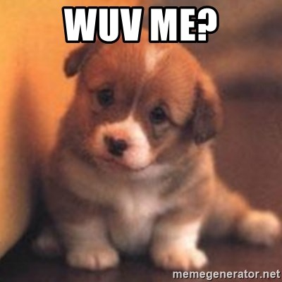 cute puppy - Wuv Me?