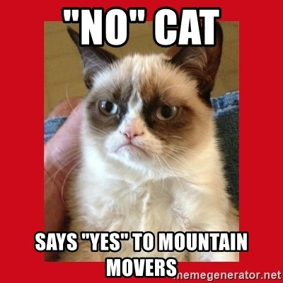 "No cat - ""No"" cat Says ""yes"" to mountain movers"