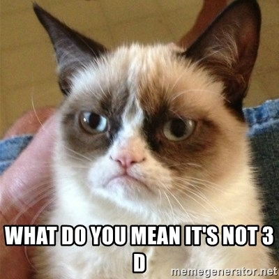 Grumpy Cat  -  What do you mean it's not 3 d