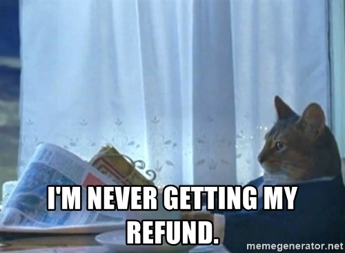 newspaper cat realization -  I'm never getting my refund.
