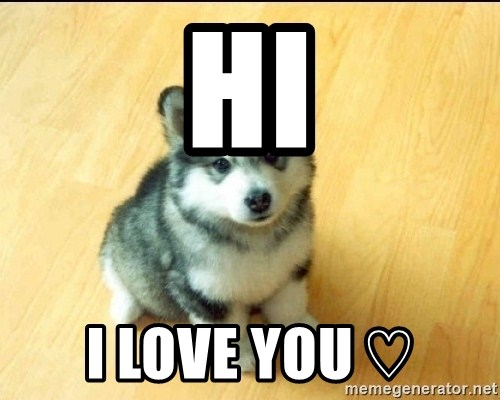 Baby Courage Wolf - Hi I LOve you ♡