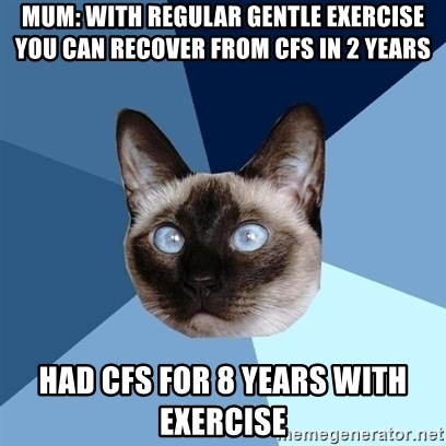 Chronic Illness Cat - Mum: With regular gentlE exercise you can Recover from CfS in 2 years Had CfS for 8 years with exercise
