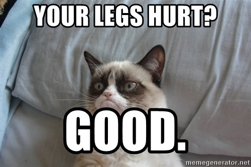 Grumpy cat good - YOUR LEGS HURT? GOOD.