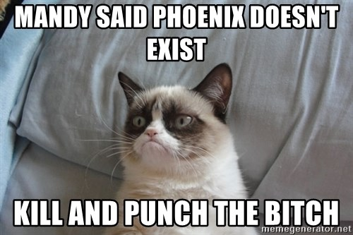 Grumpy cat good - mandy said phoenix doesn't exist kill and punch the bitch