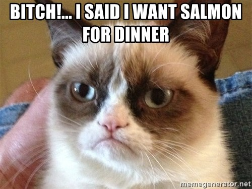 Angry Cat Meme - bitch!... I said i want salmon for dinner