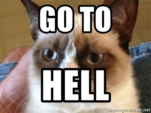 Angry Cat Meme - go to hell