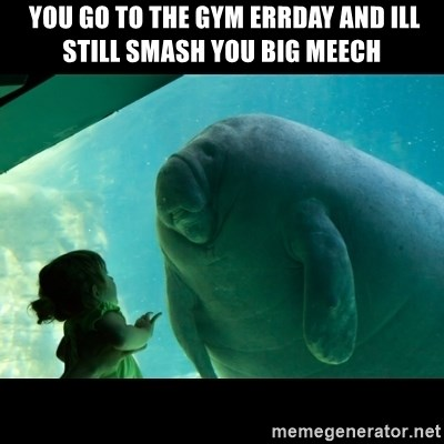 Overlord Manatee -  YOU GO TO THE GYM ERRDAY AND ILL STILL SMASH YOU BIG MEECH